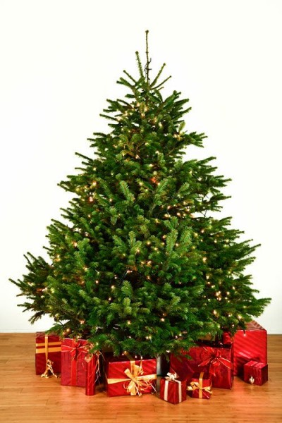 Dekorierter Weihnachtsbaum 2,5 m mit Lichterketten
