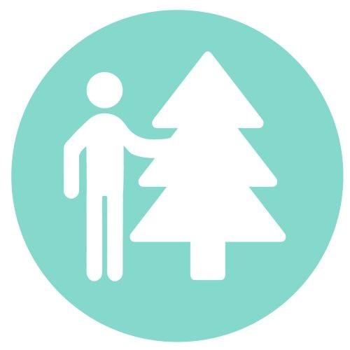 Aufstellen Bäume im INNENBEREICH bis 2,5 m (Aufstellen nur in Easyfix-Ständern möglich)