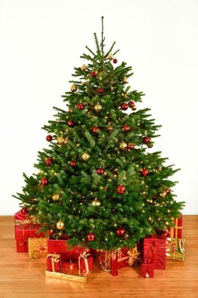 Dekorierter Weihnachtsbaum 2,5 m mit Lichterketten & Kugeln
