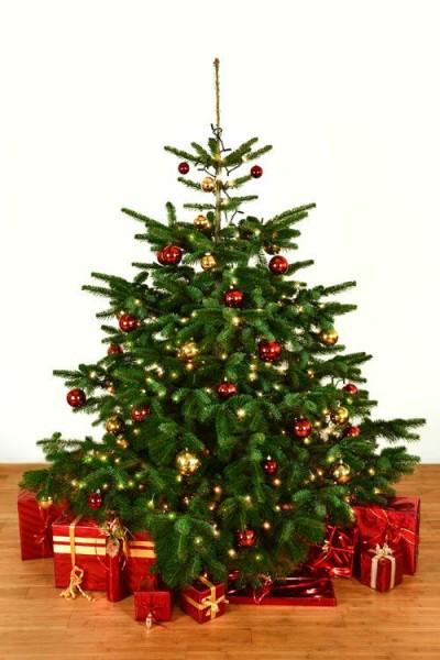 Dekorierter Weihnachtsbaum 2,0 m mit Lichterketten & Kugeln
